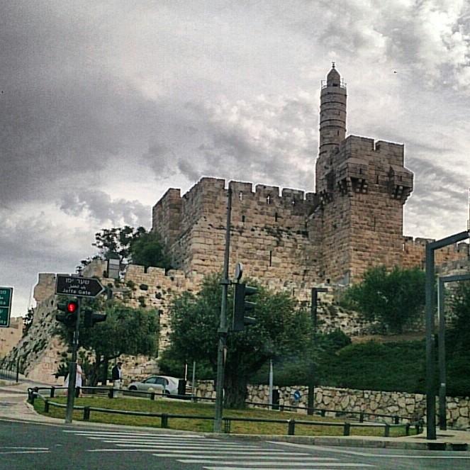 מקום 4: מגדל דוד, ליעד פרץ, מחברת טבע