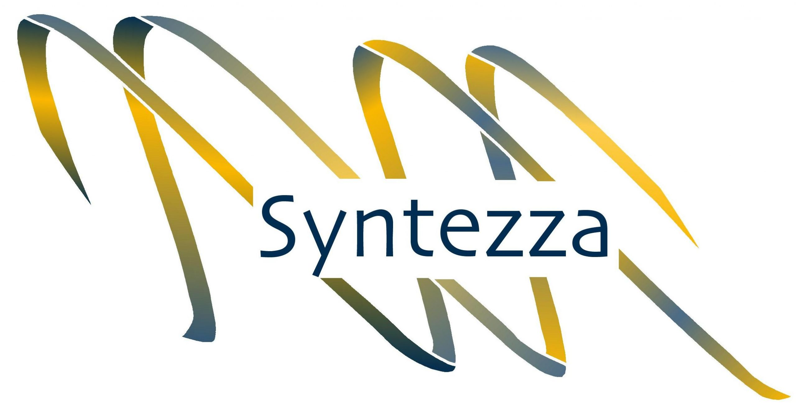 Syntezza logo 4 color